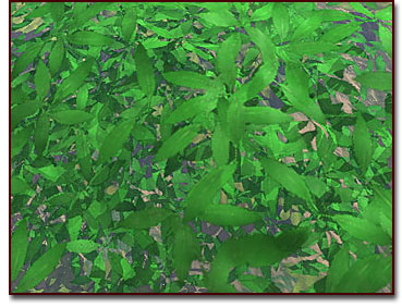 The terrain model works with the leaf texture to create a dimensional look